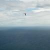 Full Flight-98