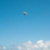 Good Air-173