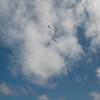 Good Flying-153
