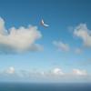 First Flight 2011-17