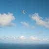 First Flight 2011-15