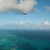 First Flight 2011-20
