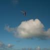 First Flight 2011-7