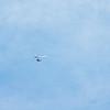 Chasing Tail-167