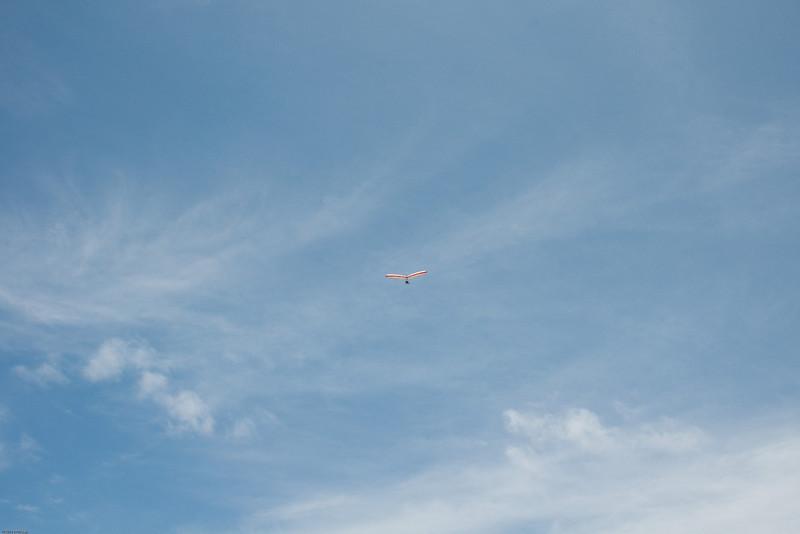 Chasing Tail-217