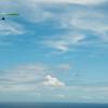 Chasing Tail-10