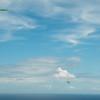 Chasing Tail-15