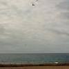 Beach Landing-19