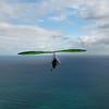 Morning Flight-7