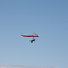 Of Hang Gliders and Speedwings-10