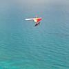 Morning Flight-16