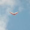 Afternoon Flight-170