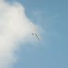 Afternoon Flight-174