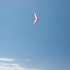 Memorial Day Flight-100