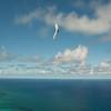 Phat Flying-20