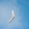 Midweek flying-14