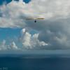 August morning flight-4
