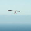 Future Hang gliding Aviator-78