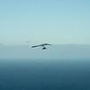 Future Hang gliding Aviator-76