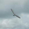 Hang Glider Reunion-12
