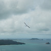 Hang Glider Reunion-19