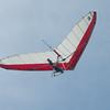 Windblown Gliders-13