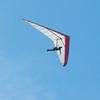 Windblown Gliders-16