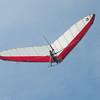 Windblown Gliders-14