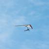 Windblown Gliders-15