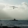 Windblown Gliders-166