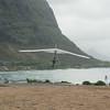 Windblown Gliders-109