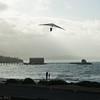 Windblown Gliders-167