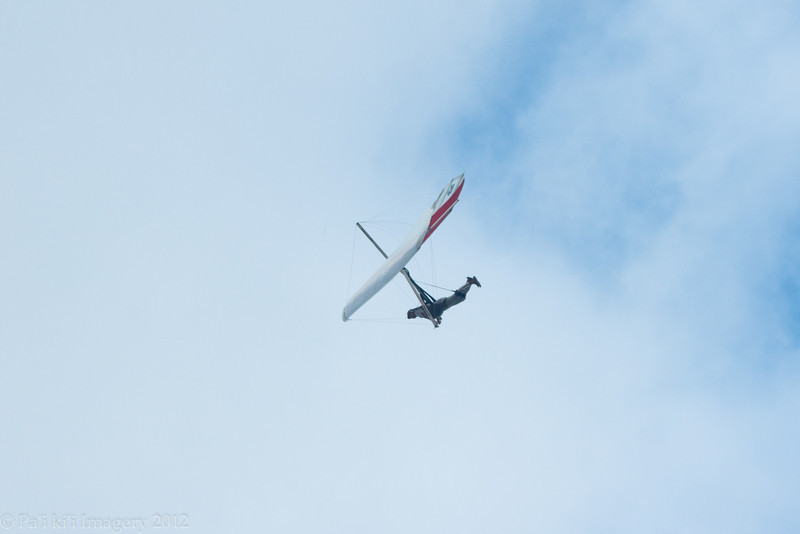 Windblown Gliders-91
