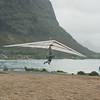 Windblown Gliders-110
