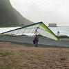 Windblown Gliders-173