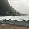 Windblown Gliders-170