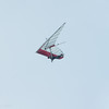 Windblown Gliders-92