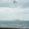 Windblown Gliders-99