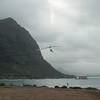 Windblown Gliders-107
