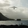 Windblown Gliders-168