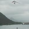 Windblown Gliders-103