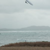 Windblown Gliders-101