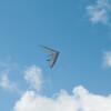 Hang Gliderand Speedwings-13