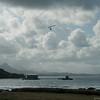 Hang Gliderand Speedwings-110
