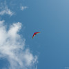 Hang Gliderand Speedwings-106