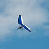 Noisy Flying-19