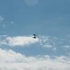 Noisy Flying-105