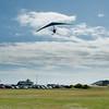Noisy Flying-110