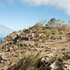 I gotta launch these two -18