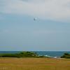 Ultralight and Kite-75